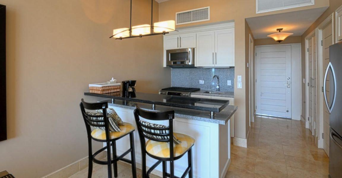 1 Bedroom Loft Apartment for Sale, Cap Cana, Dominican Republic ...