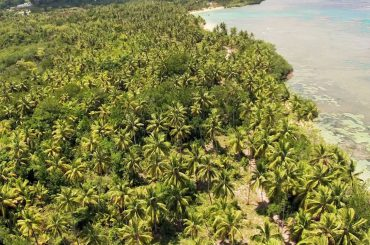 Beachfront and for sale in Samana near Las Terrenas, Dominican Republic