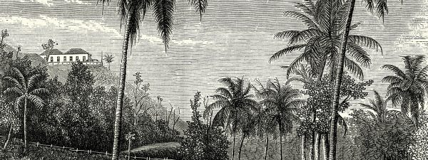 Illustration of a historic home in Jamaica