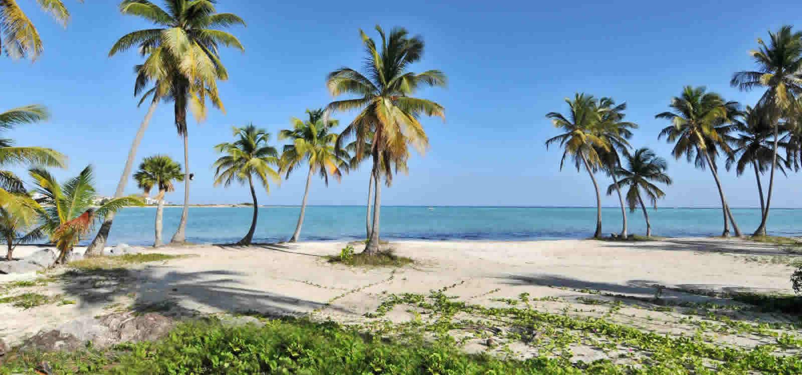 Beachfront Lots Of Land For Juanillo Beach Cap Cana Dominican Republic 7th Heaven Properties