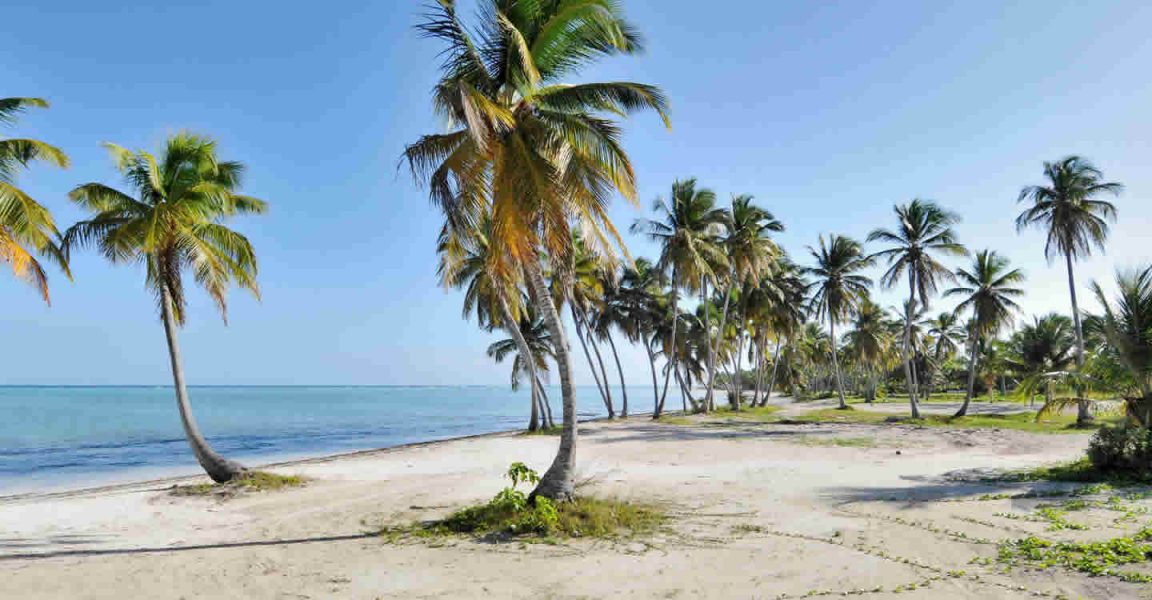 Beachfront Lots Of Land For Juanillo Beach Cap Cana Dominican Republic