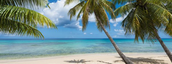 A beautiful beach in Barbados