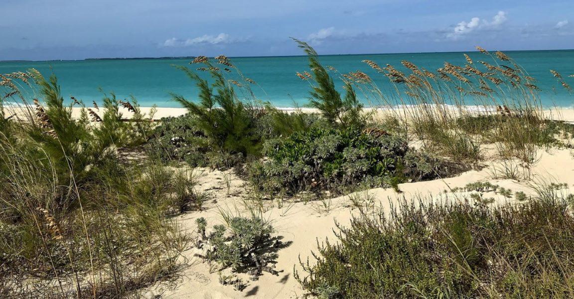 Treasure Island Beachfront Property For Sale