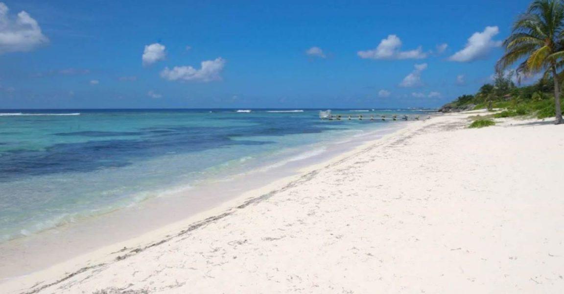 Grand Cayman Villas >> 4 Bedroom Beachfront Condo for Sale, Spotts Beach, Grand ...