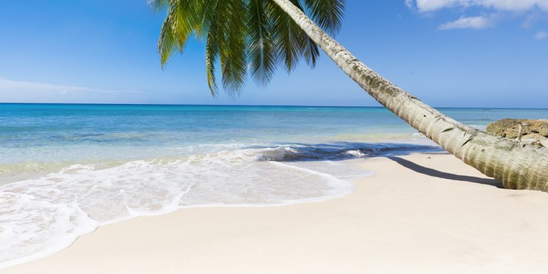 Idyllic beach in Barbados