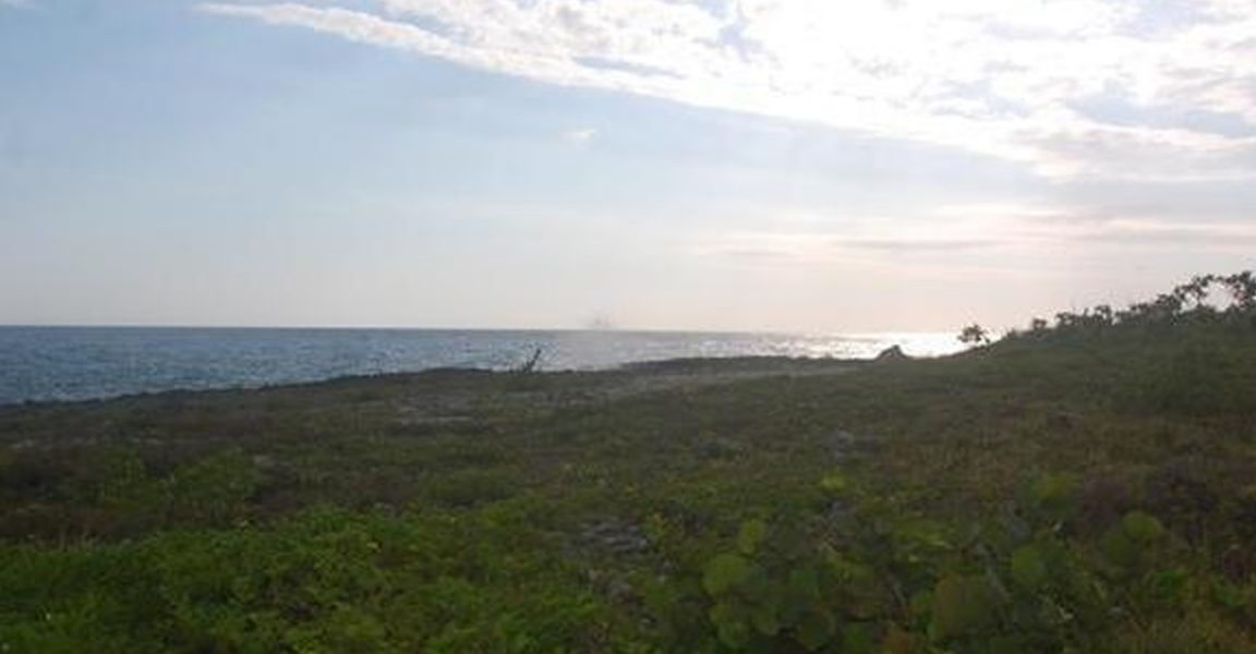201 Acres Of Beachfront Land For Sale Westmoreland Jamaica 7th