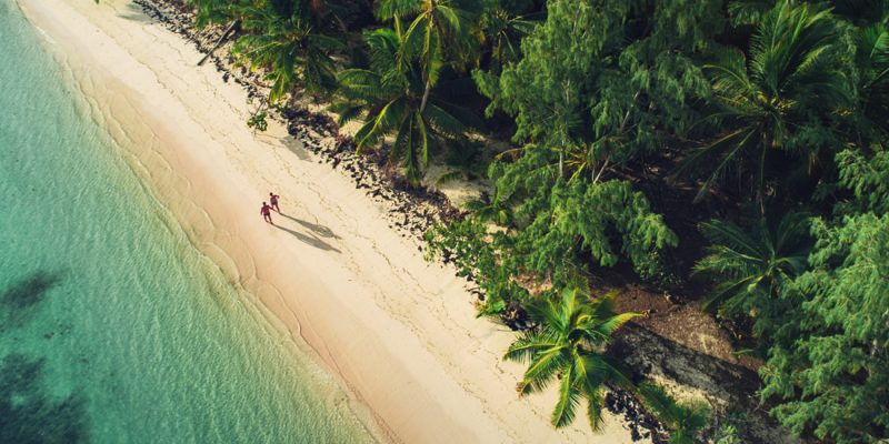 The beach in Punta Cana Dominican Republic - Aerial view