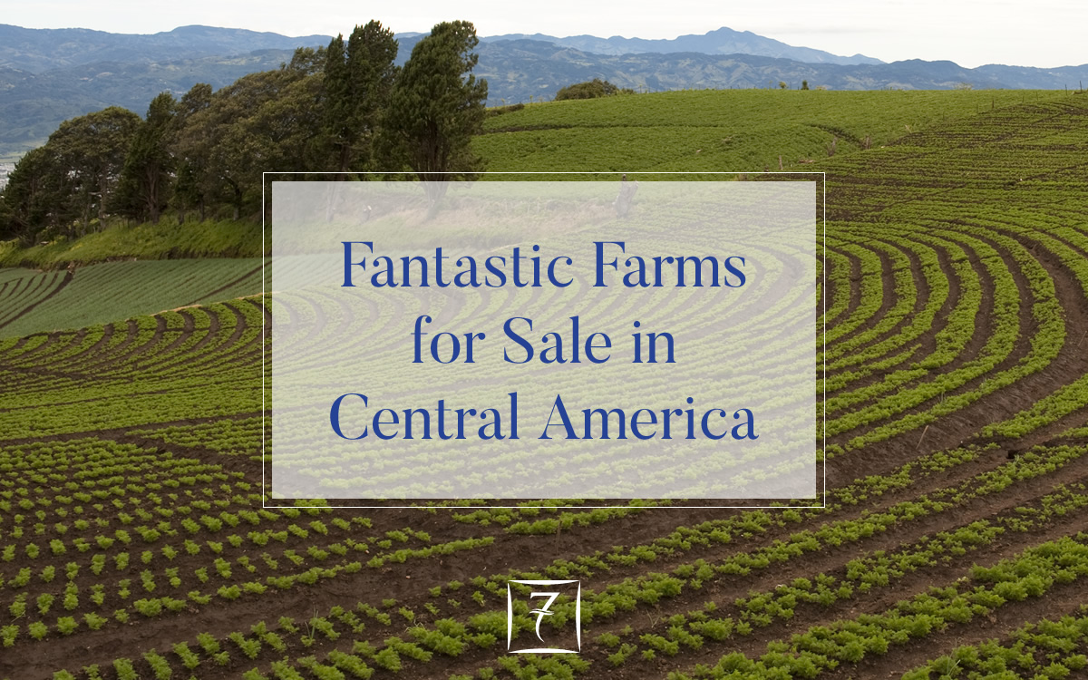 Fantastic farms for sale in Central America