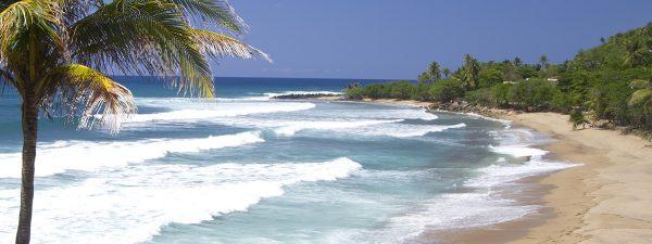 A beautiful beach in Puerto Rico