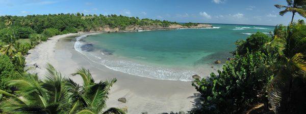 A beautiful beach in Grenada