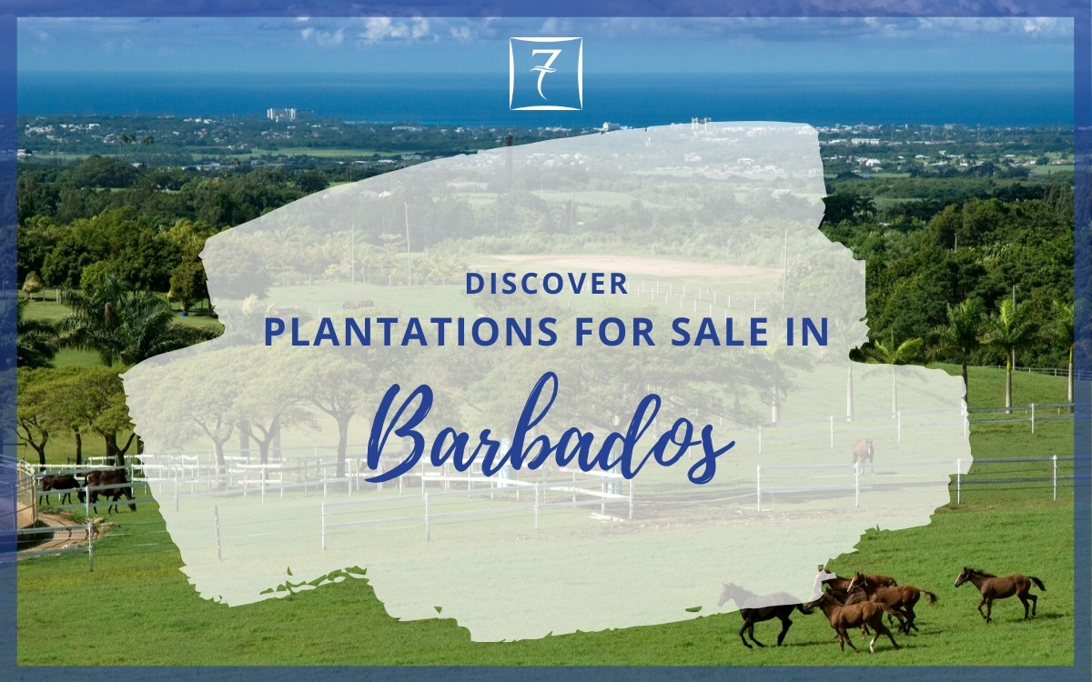 Discover plantations for sale in Barbados
