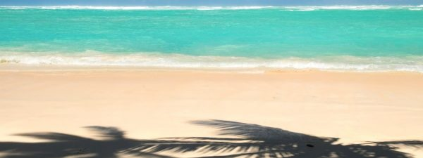 Beautiful beach in Punta Cana in the Dominican Republic