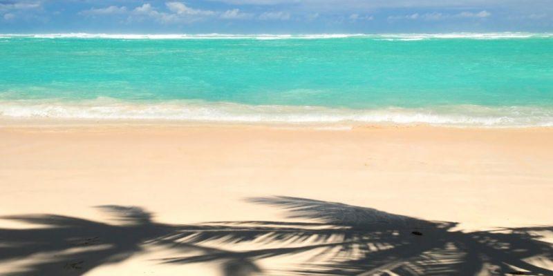 Beautiful beach in Punta Cana in the Dominican Republic