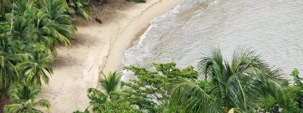Beautiful beach in Tobago