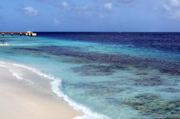 Beautiful beach in Bonaire